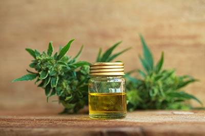 Cannabis für medizinische Zwecke