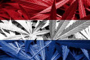 Rechtslage Cannabis in den Niederlanden