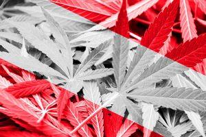 Rechtslage Cannabis in Österreich
